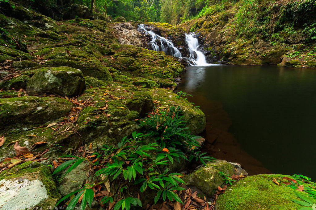 Waterfall in the Lamington National Park